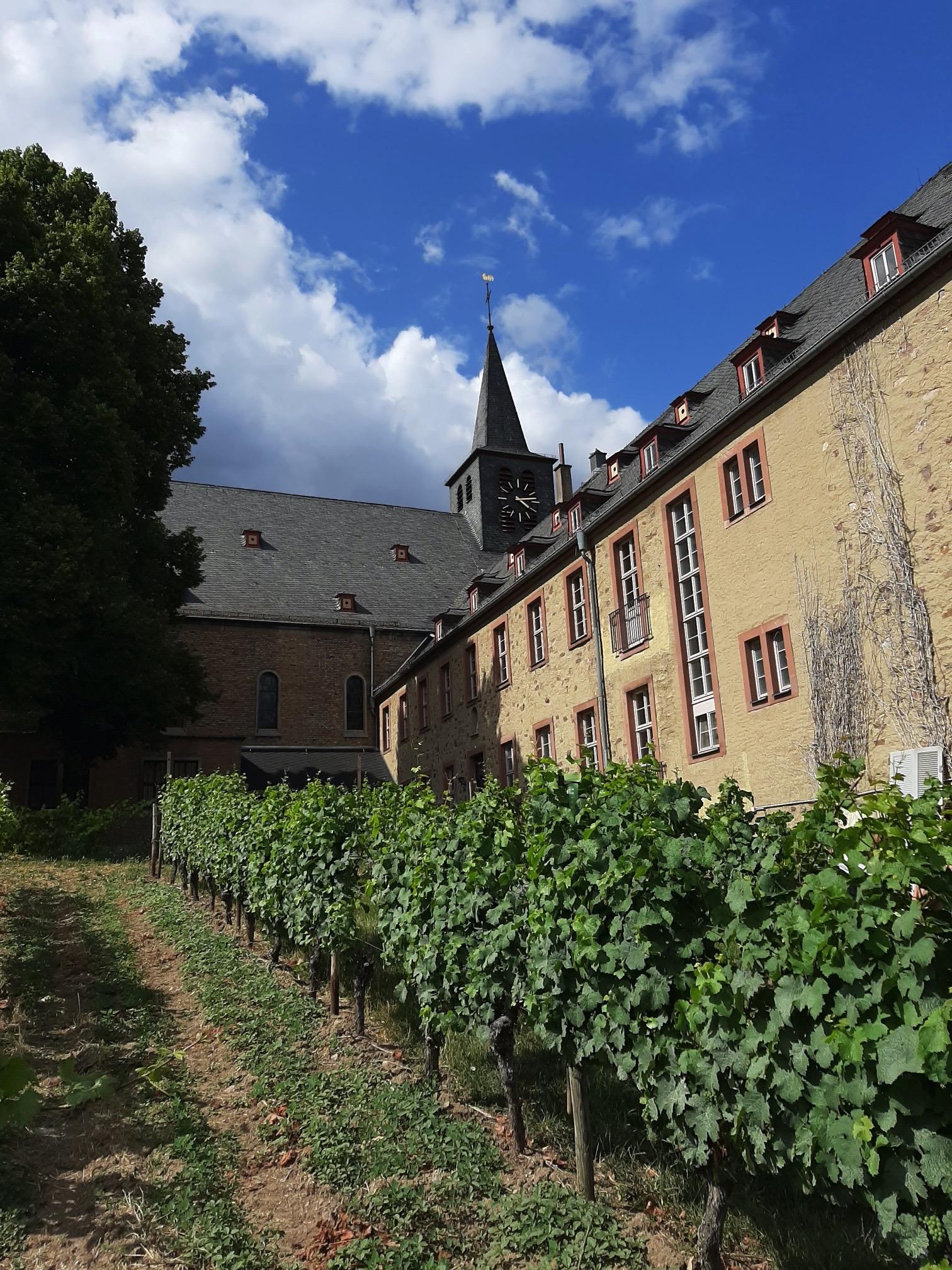Bischofliches Weingut