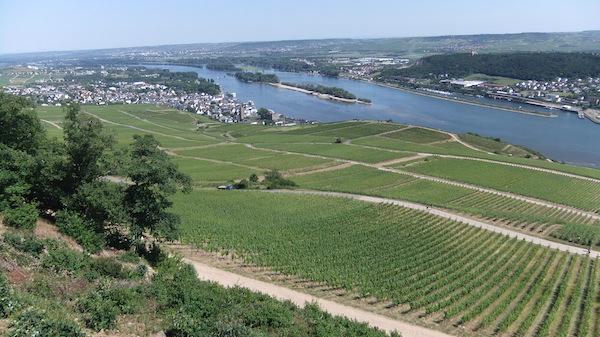 Duitsland wijnland