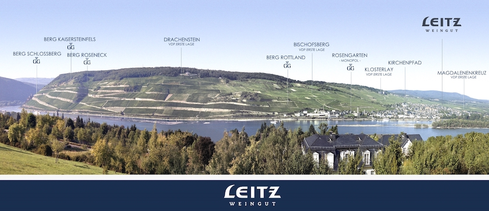 Wijngaarden Leitz